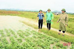 Mưa lớn, nhiều địa phương miền núi Hà Tĩnh ngập cục bộ, lúa bị đổ ngã