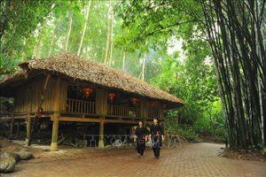 Khu bảo tồn làng nhà sàn dân tộc Thái Hải