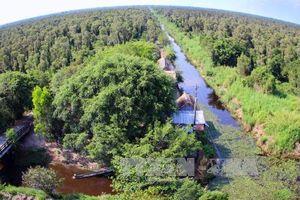Khơi dậy tiềm năng du lịch của vùng rừng U Minh Hạ