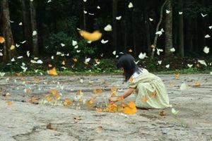 Cúc Phương - Độ rừng vào Hội