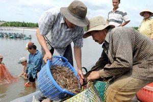 Thị trường thực phẩm Halal: Cơ hội lớn cho nông sản Việt