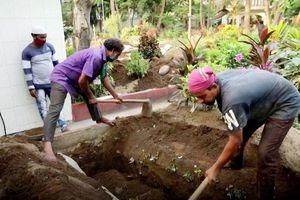 Người đào mộ làm việc không ngừng nghỉ ở Ấn Độ