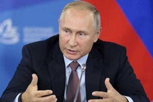 Tổng thống Putin phủ nhận những suy đoán về Nord Stream 2