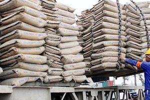 Philippines mở điều tra chống bán phá giá xi măng nhập khẩu từ Việt Nam