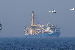 Nghị sĩ Đức: Ngăn Nord Stream-2 là tự sát chính trị