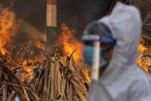 Bên trong 'cơn ác mộng' tại Ấn Độ