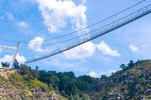 Khai trương cầu treo bộ hành dài nhất thế giới