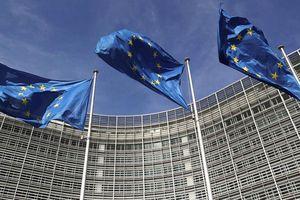 EU nỗ lực giảm phụ thuộc nước ngoài trong 6 lĩnh vực chiến lược