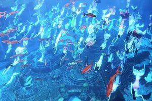 Hơn 100 'tiên cá' biểu diễn lập kỷ lục Guinness