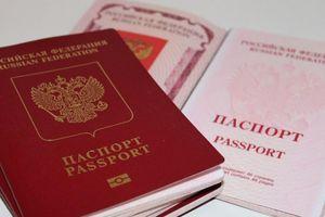 Đa số người nhập quốc tịch Nga là người Ukraine