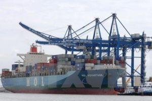 Cảng Tân Cảng - Cái Mép Thị Vải đón chuyến tàu đầu tiên của hãng tàu China United Line