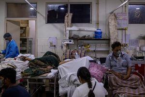 Ấn Độ: Dịch ngày thêm nguy cấp, bắt đầu mở rộng phong tỏa