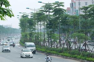 Kỳ vọng một Việt Nam xanh