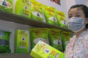 Bộ Công Thương lên tiếng về việc gạo ST24, ST25 tiếp tục bị đăng ký nhãn hiệu ở ÚC