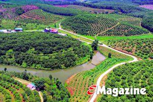 Xây dựng nông thôn mới ở Hà Tĩnh: Vững từ thôn, chắc từ xã để huyện vững chắc, tỉnh thuyết phục