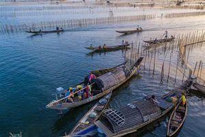 Đầm phá Tam Giang: Điểm du lịch trải nghiệm không thể bỏ qua khi đến Huế