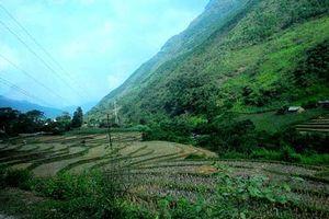 Ngắm thị trấn Đồng Văn vào mùa đẹp nhất ở Hà Giang