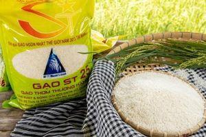 Khẩn cấp: Gạo ST 24, ST 25 bị đăng ký nhãn hiệu tại Úc
