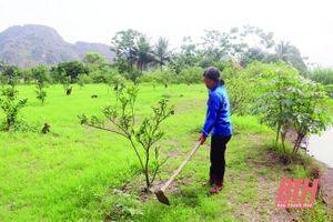 Xã Hà Tiến phát triển kinh tế trang trại