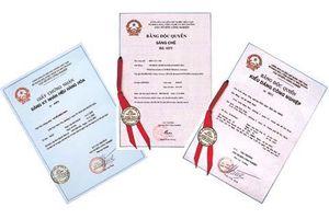Lượng đơn đăng ký sáng chế của tổ chức, cá nhân Việt Nam tăng 35%
