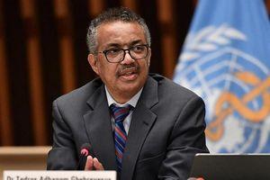 Rộ tin ông Tedros có ý định tái tranh cử Tổng Giám đốc WHO