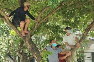 CLIP: Cổ động viên Hòa Bình leo cây xem trận khai mạc giải Hạng nhì Quốc gia 2021