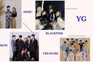 YG thu về hơn 10 tỷ won chỉ nhờ mini album của idol này