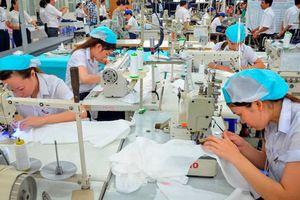 Đảm bảo việc làm bền vững, cải thiện điều kiện làm việc cho người lao động