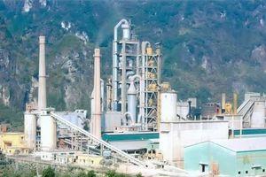 Xi măng La Hiên đặt kế hoạch lợi nhuận giảm mạnh khiến cổ đông bức xúc