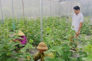 Phát triển nông nghiệp thông minh nơi vùng cao biên giới