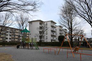 Nhật Bản: sau 40 năm suy giảm, dân số trẻ em của Nhật Bản đạt mức thấp kỷ lục