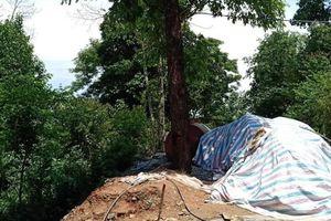Trú mưa dưới gốc cây bị sét đánh văng xuống ta luy âm tử vong