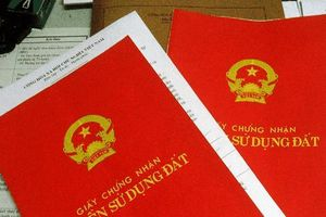 Khởi tố Phó ban Tổ chức Thành ủy TP Tuy Hòa
