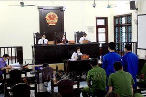 Phạt tù chủ nhà xe Phúc Cường về tội cố ý làm hư hỏng tài sản