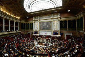 Hạ viện Pháp thông qua dự luật về khí hậu