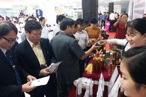 Sắp diễn ra Ngày hội Cố đô khởi nghiệp tỉnh Thừa Thiên Huế năm 2021 - Techfest Hue 2021