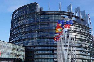 Người Áo chỉ trích Liên minh châu Âu có thành kiến với Nga