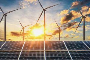 Phát triển thành công 300 MW điện tái tạo do khu vực tư nhân đầu tư