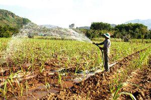 Đầu tư hồ chứa nước Sơn Trung