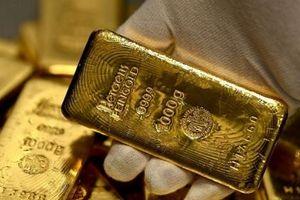 Giá vàng tăng giảm thất thường, nhà đầu tư dễ kiếm lời?