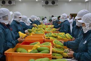 Kim ngạch xuất khẩu nhiều mặt hàng chủ lực tăng trưởng 2 con số