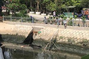 TP Hồ Chí Minh: Phát hiện thi thể người phụ nữ dưới kênh Ba Thôn