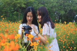 Ngắm vườn hoa, rau củ quả trong trường đại học ở TP.HCM