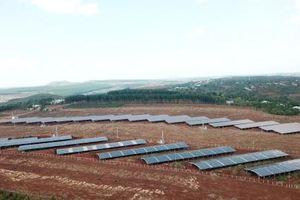 Gia Lai: Phần lớn điện mặt trời áp mái nhà không đạt tiêu chí