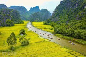 Tổ chức 'Festival Nhiếp ảnh quốc tế Việt Nam' lần thứ nhất
