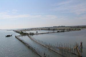 Lấn chiếm đất để nuôi trồng thủy sản người đàn ông ở Huế bị phạt 400 triệu đồng