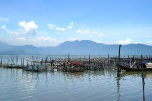 Xử phạt nặng vụ chiếm dụng hàng chục nghìn m2 đất mặt nước để nuôi thủy sản