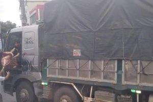 Xe máy va chạm với xe tải, nam sinh lớp 12 tử vong