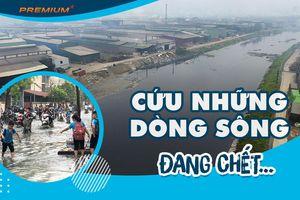 Cứu những dòng sông đang chết…