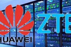 Vì sao Ấn Độ nối gót châu Âu 'khai tử' Huawei và ZTE của Trung Quốc?